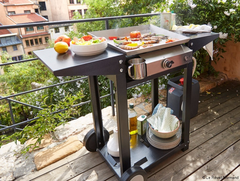 Les barbecues s utilisent toute l ann e article le r veil normand for Plancha tonio castorama